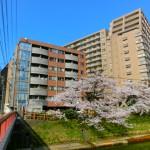 桜橋電停まで徒歩3分♪富山駅すぐ!